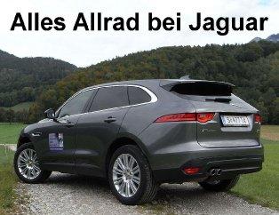 jaguar_allrad-offensive