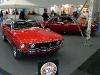 classic_car_show_022